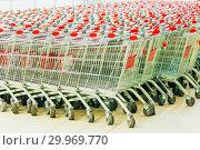 Купить «Lots of empty grocery carts at the store», фото № 29969770, снято 16 января 2019 г. (c) Акиньшин Владимир / Фотобанк Лори