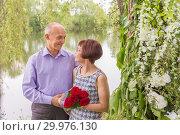 Купить «Beautiful elegant middle-aged couple posing smiling at a holiday.», фото № 29976130, снято 18 мая 2018 г. (c) Акиньшин Владимир / Фотобанк Лори