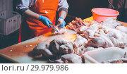 Купить «chicken meat production», фото № 29979986, снято 7 февраля 2019 г. (c) Mark Agnor / Фотобанк Лори