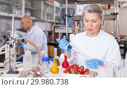 Купить «Woman biochemist checking fruits and vegetables», фото № 29980738, снято 24 января 2019 г. (c) Яков Филимонов / Фотобанк Лори