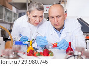 Купить «Biochemists recording experimental procedure and results», фото № 29980746, снято 24 января 2019 г. (c) Яков Филимонов / Фотобанк Лори