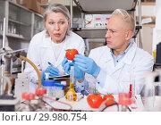 Купить «Scientists taking notes while performing experiments», фото № 29980754, снято 24 января 2019 г. (c) Яков Филимонов / Фотобанк Лори