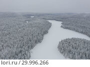 Купить «Amazing Wild Olanga River In Frozen Forest. Really Snowly Winter On The North. Aerial,  Paanajärvi, Karelia, Russia», фото № 29996266, снято 9 февраля 2019 г. (c) Кирилл Трифонов / Фотобанк Лори