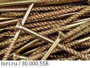 Купить «Golden screws», фото № 30000558, снято 23 февраля 2012 г. (c) Wavebreak Media / Фотобанк Лори