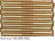 Купить «Wellordered golden screws», фото № 30000562, снято 23 февраля 2012 г. (c) Wavebreak Media / Фотобанк Лори