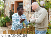 Купить «Disgruntled men talking in backyard», фото № 30007298, снято 15 декабря 2018 г. (c) Яков Филимонов / Фотобанк Лори