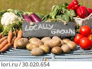 Купить «Organic vegetables on a stand at a farmers market», фото № 30020654, снято 4 июля 2013 г. (c) Wavebreak Media / Фотобанк Лори