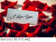 Купить «Composite image of i love you», фото № 30111442, снято 23 января 2015 г. (c) Wavebreak Media / Фотобанк Лори