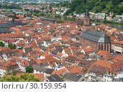 Купить «Heidelberg, Germany, view of the old town and the Neckar valley », фото № 30159954, снято 8 июня 2017 г. (c) Caro Photoagency / Фотобанк Лори