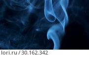 Купить «Thin trickle of blue light smoke rising graceful twists on black background blowing from bottom to top. Close Up», видеоролик № 30162342, снято 8 августа 2018 г. (c) Некрасов Андрей / Фотобанк Лори