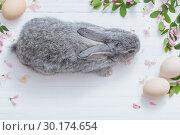 Купить «rabbit with flowers on white wooden background», фото № 30174654, снято 14 мая 2018 г. (c) Майя Крученкова / Фотобанк Лори