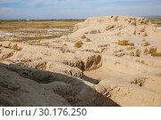 Купить «Toprak-Kala fortress in Kyzylkum desert», фото № 30176250, снято 21 октября 2016 г. (c) Юлия Бабкина / Фотобанк Лори