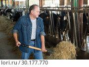 Купить «Adult farmer is standing at her workplace and feeding cows», фото № 30177770, снято 24 октября 2017 г. (c) Яков Филимонов / Фотобанк Лори