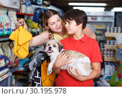 Купить «Family choosing dogs clothes in shop», фото № 30195978, снято 22 августа 2018 г. (c) Яков Филимонов / Фотобанк Лори