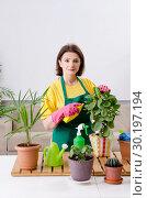 Купить «Female gardener with plants indoors», фото № 30197194, снято 28 ноября 2018 г. (c) Elnur / Фотобанк Лори