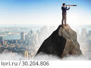 Купить «Businessman at the top of mountain», фото № 30204806, снято 19 марта 2019 г. (c) Elnur / Фотобанк Лори