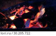 Купить «Ночной костер. Языки пламени на фоне черных углей», видеоролик № 30205722, снято 13 февраля 2016 г. (c) Олег Хархан / Фотобанк Лори
