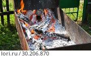 Купить «Burning embers, charcoal preparing for making bbq in metal mangal», видеоролик № 30206870, снято 24 апреля 2019 г. (c) FotograFF / Фотобанк Лори