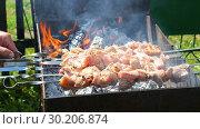 Купить «Grilled appetizing kebab cooking on metal skewers», видеоролик № 30206874, снято 15 июля 2019 г. (c) FotograFF / Фотобанк Лори