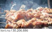 Купить «Grilled appetizing kebab cooking on metal skewers», видеоролик № 30206886, снято 27 января 2020 г. (c) FotograFF / Фотобанк Лори