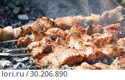 Купить «Grilled appetizing kebab cooking on metal skewers», видеоролик № 30206890, снято 18 июля 2019 г. (c) FotograFF / Фотобанк Лори
