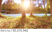 Купить «Meadow at mountain river bank. Landscape with green grass, pine trees and sun rays. Movement on motorised slider dolly.», видеоролик № 30215942, снято 20 февраля 2019 г. (c) Александр Маркин / Фотобанк Лори