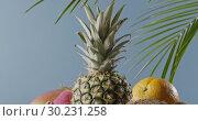 Купить «Vertical panoramic upward slow motion with composition from fresh natural exotic fruits on a wooden table on a blue background. Motion, 4K UHD video, 3840, 2160p.», видеоролик № 30231258, снято 4 июля 2018 г. (c) Ярослав Данильченко / Фотобанк Лори