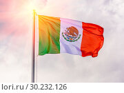 Купить «The national flag of Mexico is fluttering in the wind against a blue cloudy sky.», фото № 30232126, снято 21 июня 2018 г. (c) Акиньшин Владимир / Фотобанк Лори