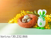 Купить «Easter background. Easter bunnies and Easter eggs in the nest near the mimosa flowers, free space for festive Easter text», фото № 30232866, снято 27 февраля 2018 г. (c) Зезелина Марина / Фотобанк Лори