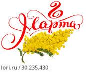 Купить «8 марта желтая мимоза», иллюстрация № 30235430 (c) Алексей Григорьев / Фотобанк Лори