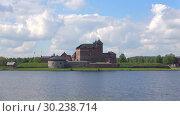 Купить «Июньский день на озере Ванаявеси. Вид на старинную крепость-тюрьму. Хямеэнлинна, Финляндия», видеоролик № 30238714, снято 9 июня 2017 г. (c) Виктор Карасев / Фотобанк Лори