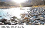 Купить «Dolly slider shot of the splashing water in a mountain river near forest. Wet rocks and sun rays. Horizontal steady movement.», видеоролик № 30242742, снято 3 октября 2018 г. (c) Александр Маркин / Фотобанк Лори