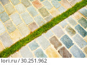 Купить «technique to hide rainwater drain with grass patch», фото № 30251962, снято 10 мая 2017 г. (c) Сергей Новиков / Фотобанк Лори