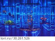 Купить «oceanarium interior photo», фото № 30261526, снято 10 июня 2017 г. (c) Jan Jack Russo Media / Фотобанк Лори