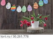 Купить «red tulips and paper painted eggs on wooden background», фото № 30261778, снято 6 марта 2019 г. (c) Майя Крученкова / Фотобанк Лори