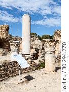Купить «Коринфские колонны в городе музее Карфагена. Руины древней карфагенской цивилизации. Объект всемирного наследия ЮНЕСКО. Тунис, Африка», фото № 30294270, снято 5 мая 2012 г. (c) Кекяляйнен Андрей / Фотобанк Лори
