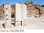 Купить «Руины бань Карфагена, остатки колонн. Всемирное наследие ЮНЕСКО. Тунис, Африка», фото № 30294278, снято 5 мая 2012 г. (c) Кекяляйнен Андрей / Фотобанк Лори