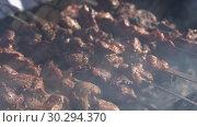 Купить «Шашлыки», видеоролик № 30294370, снято 12 марта 2019 г. (c) А. А. Пирагис / Фотобанк Лори