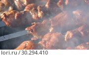 Купить «Шашлыки», видеоролик № 30294410, снято 12 марта 2019 г. (c) А. А. Пирагис / Фотобанк Лори
