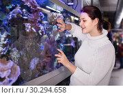 Купить «teenager looking at colored tropical fishes and underwater rocks into big aquarium», фото № 30294658, снято 17 февраля 2017 г. (c) Яков Филимонов / Фотобанк Лори