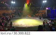 Купить «Цирковая арена перед началом представления в цирке», видеоролик № 30300822, снято 12 марта 2019 г. (c) Кекяляйнен Андрей / Фотобанк Лори