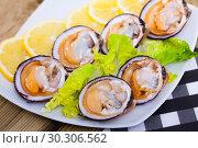 Купить «Fresh bivalve mussels with lemon», фото № 30306562, снято 22 марта 2019 г. (c) Яков Филимонов / Фотобанк Лори