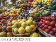 Купить «Fruits stall at the market hall Mercado dos Lavradores, Funchal, Madeira, Portugal, Europe.», фото № 30320082, снято 15 февраля 2019 г. (c) age Fotostock / Фотобанк Лори