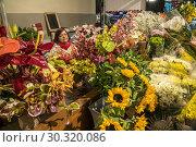 Купить «Sales woman with flowers at the market hall Mercado dos Lavradores, Funchal, Madeira, Portugal, Europe.», фото № 30320086, снято 15 февраля 2019 г. (c) age Fotostock / Фотобанк Лори