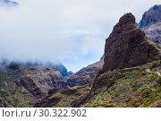 Купить «Fabulous Masca mountain gorge the most visited tourist attraction on Tenerife», фото № 30322902, снято 13 сентября 2015 г. (c) Ирина Мойсеева / Фотобанк Лори