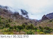 Купить «Fabulous Masca mountain gorge the most visited tourist attraction on Tenerife», фото № 30322910, снято 13 сентября 2015 г. (c) Ирина Мойсеева / Фотобанк Лори