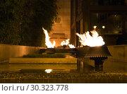 Купить «Flames burst from the water. Night view of the burning torches», фото № 30323778, снято 23 сентября 2015 г. (c) Евгений Ткачёв / Фотобанк Лори