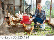 Купить «Young woman farmer caring for poultry», фото № 30325194, снято 28 февраля 2019 г. (c) Яков Филимонов / Фотобанк Лори