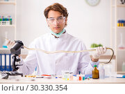 Купить «Male scientist extracting poison from snake for drug synthesis», фото № 30330354, снято 24 сентября 2018 г. (c) Elnur / Фотобанк Лори