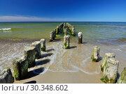 Купить «Old wooden breakwater on sandy shore of Baltic sea», фото № 30348602, снято 20 июля 2013 г. (c) Сергей Трофименко / Фотобанк Лори
